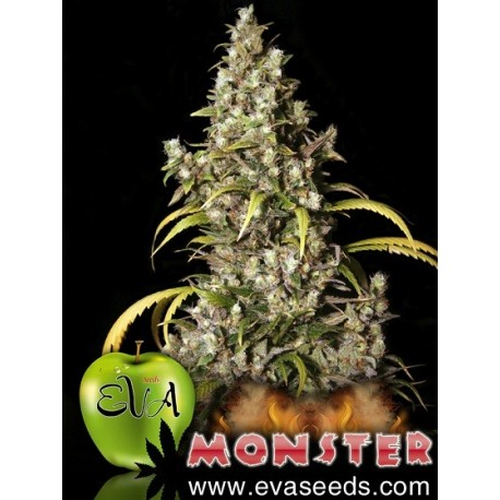 Monster - FEM - Eva Seeds