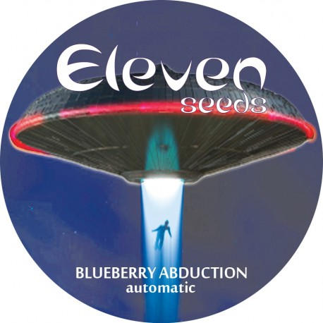 Blueberry Abduction - AUTO - Eleven Seeds